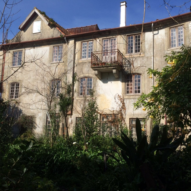 Casa Camélia
